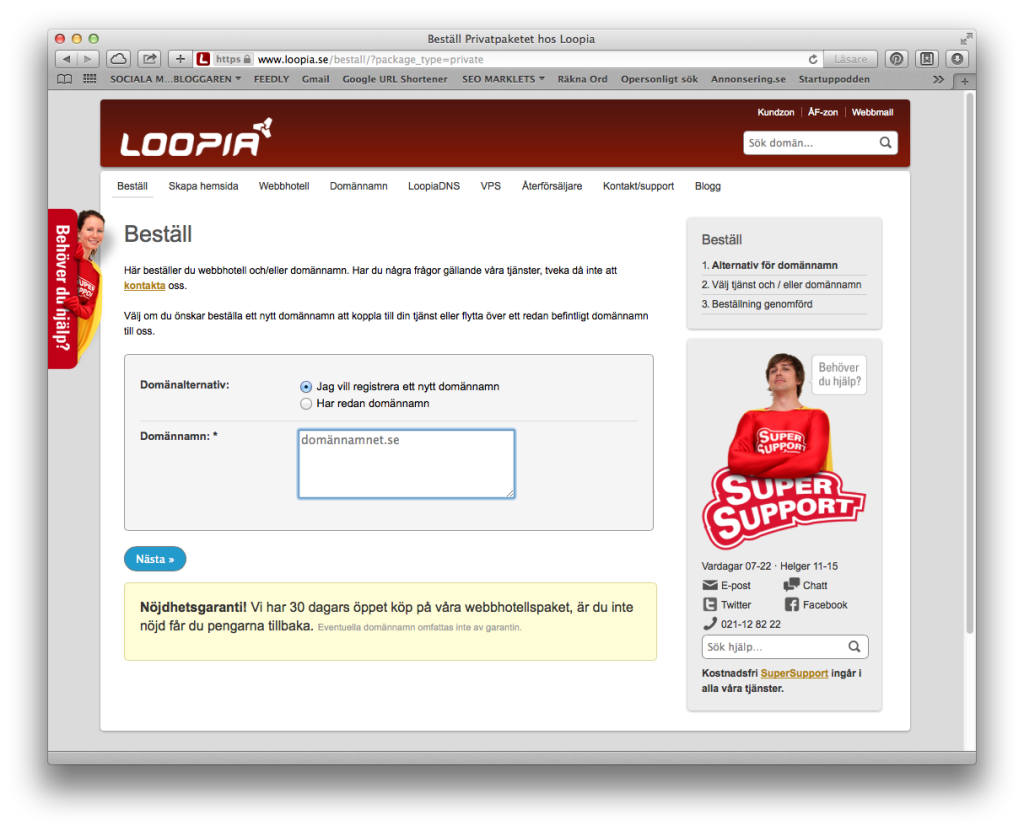 loopia_doman-1